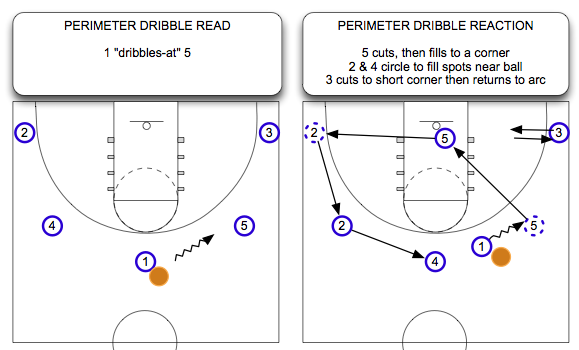 Perimeter Dribble Read and React